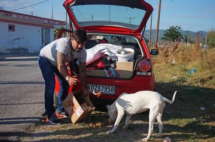 Feeding Street Dogs